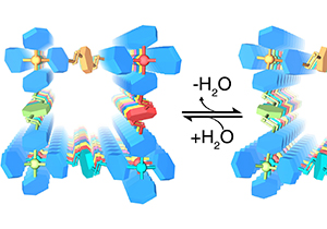 Zhang Yuebiao's Group Uncovered New Dynamics in Covalent Organic Frameworks
